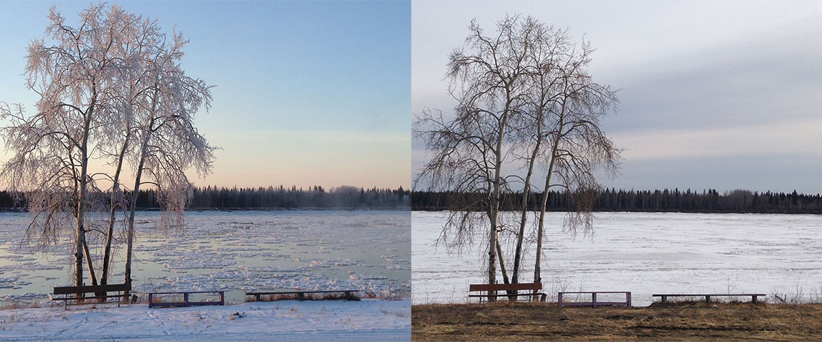 Tanana in Fall and Spring