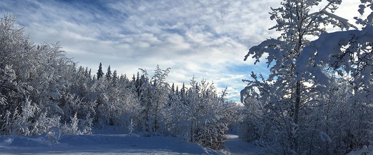 Northway, Alaska Featured