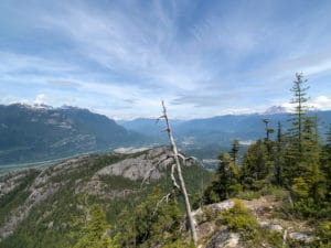 view of Squamish Valley and the Chief from late June.